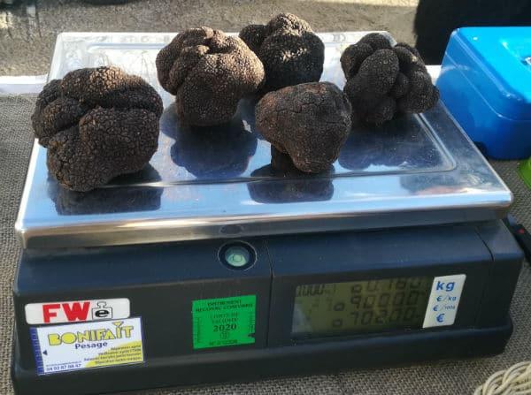 truffes-marché-animateur de la fête de la truffe-acheteurs